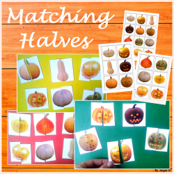 Pumpkins Matching Activity