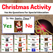 Yes No Questions - Winter and Christmas