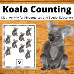 Koala Counting Activity