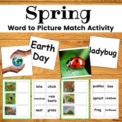 Spring Activity - Word to Picture Match for Special Education