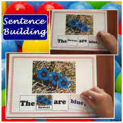 Sentence Building, Building Sentences Activity - What color is it?