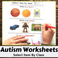 Receptive Language Worksheets Print and Go - Select Item by Class