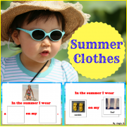 Summer Clothing - Adapted Book, Special Education and Autism Resource