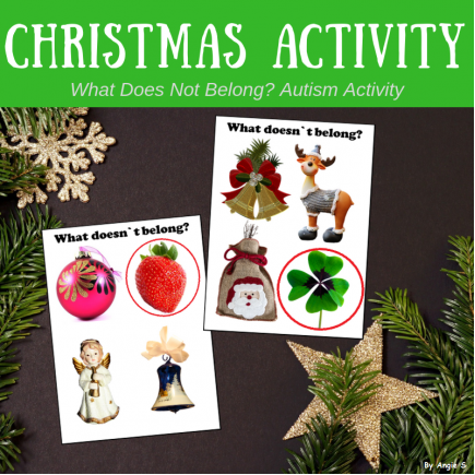 What Doesn`t Belong? Christmas Activity