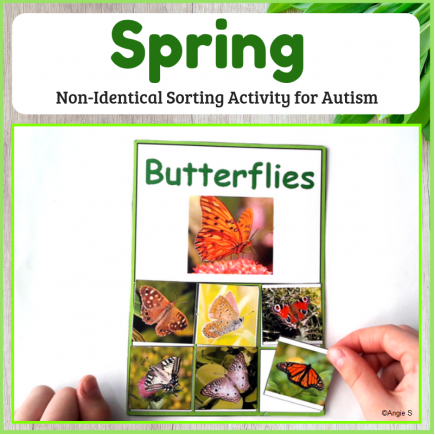 Non-Identical Sorting Activity for Spring