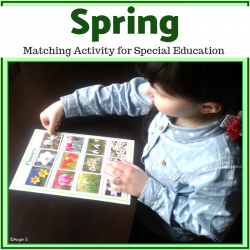 Autism Matching File Folders -Spring