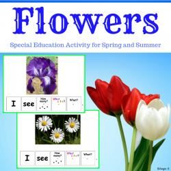 Flowers Activity - Building Sentences