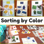 Sorting by Color - Autism Resource, Special Ed, Occupational Therapy, ABA Therapy