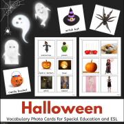 Halloween Vocabulary Photo Flash Cards