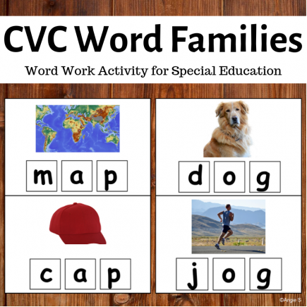 CVC Word Families, Spelling CVC Words