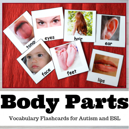 Body Parts Cards for Autism, Visuals, Speech Therapy, ABA