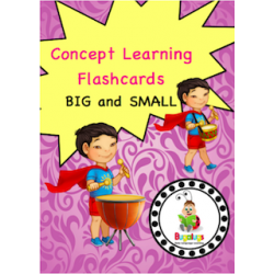 Adjective Flashcards - Big and Small