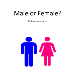 Male versus Female