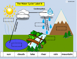 Water cycle diagram without labels the water cycle match sort amp sequence ccuart Gallery