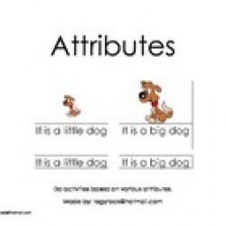 Attributes (Autism, Special Needs, Early Learning, Matching)