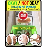 OKAY/NOT OKAY To Eat or Put in Mouth Task Cards TASK BOX FILLER