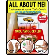 ALL ABOUT ME Task Cards with YES/NO Responses TASK BOX FILLER