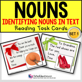 "IDENTIFYING NOUNS High Interest Reading TASK CARDS ""Task Box Filler"" for Autism"