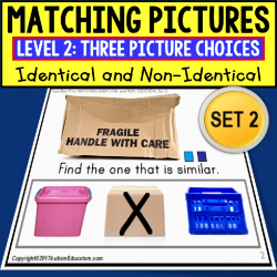 "MATCHING IDENTICAL and NON-IDENTICAL PICTURES Task Cards SET 2 ""TASK BOX FILLER"""