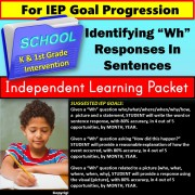 Special Education Work Packet | IEP GOAL SKILL BUILDER for Wh Question Responses