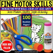 "FINE MOTOR Skills Nouns | Independent Work Packet BOOKLETS | ""Task Box Filler"""