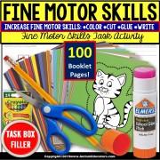 FINE MOTOR Skills Nouns | Independent Work Packet BOOKLETS | Task Box Filler Activities