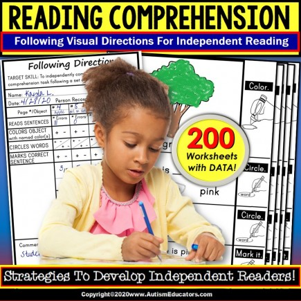 READING COMPREHENSION Following Visual Directions Worksheets for Key Details