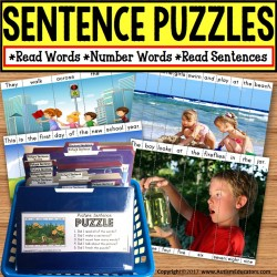 PICTURE PUZZLES Building Sentences FILE FOLDER Activities for Special Education