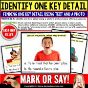 KEY DETAILS Reading Comprehension TASK BOX FILLER ACTIVITIES - Special Education and Autism Resource