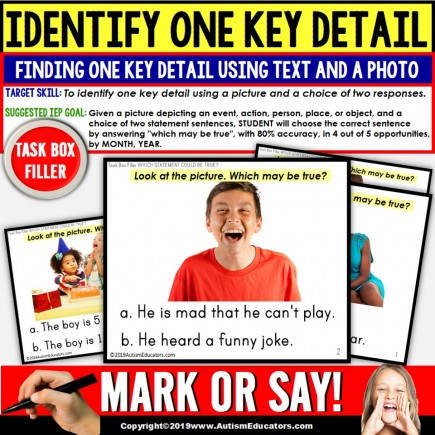 KEY DETAILS Reading Comprehension Task Cards TASK BOX FILLER - Special Education and Autism Resource