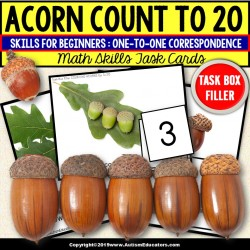 "ONE TO ONE CORRESPONDENCE 1 -20 Counting ACORNS Task Cards ""Task Box Filler"""
