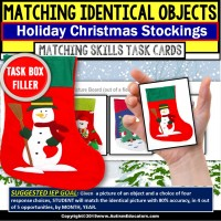 CHRISTMAS Identical Matching Task Cards TASK BOX FILLER