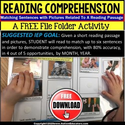 FREE File Folder Activities for Reading Comprehension