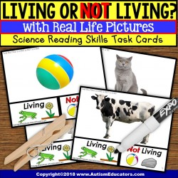 Living or Not Living TASK CARDS TASK BOX FILLER For Special Education