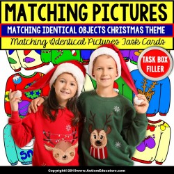 CHRISTMAS Sweater Matching Task Cards TASK BOX FILLER for Special Education