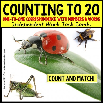 One To One Correspondence To 20 TASK CARDS BUGS AND INSECTS for Autism TASK BOX FILLER