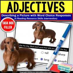 ADJECTIVES Task Cards TASK BOX FILLER for Special Education Reading Resource