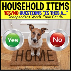 Task Cards YES or NO HOUSEHOLD ITEMS TASK BOX FILLER