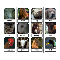 Farm Animal Face Labeling Task for Autism