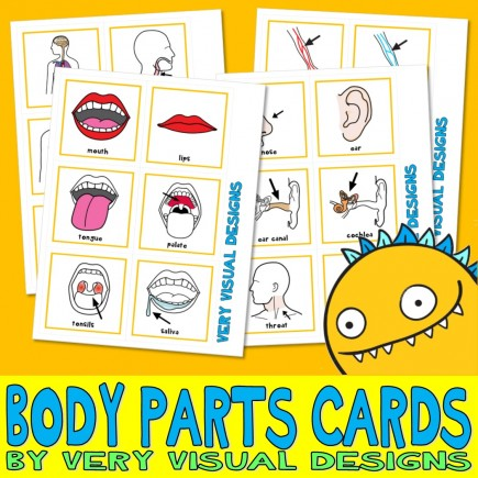 190 BODY PARTS PECS : Large Picture Communication Cards anatomy health autism aba speech therapy visual aid
