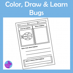 Color Draw and Learn Bugs Doodle Activity Pages