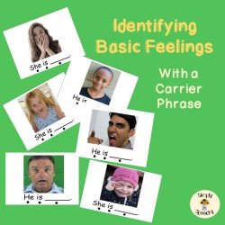 Identifying Feelings-With Carrier Phrase