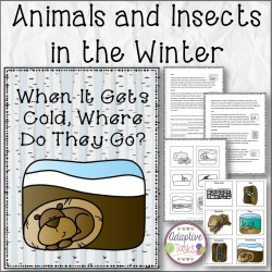 Animals and Insects in the Winter