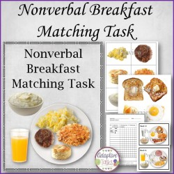 Nonverbal Breakfast Matching Task