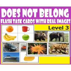 What / Which Does Not Belong Level 3 - Category Flash Task Cards with Real Images.