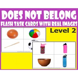 Does Not Belong  Level  2 - Flash Task cards with Real Images