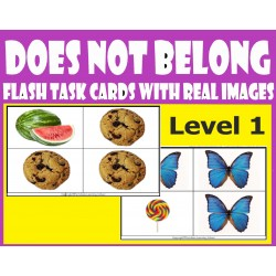 Does Not Belong Level 1 - Flash Task Cards with Real Images.