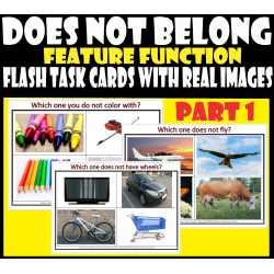 Which Does Not Belong - Feature Function Flash Task cards with real Images – Part 1.