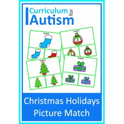 Christmas Holidays Picture Match Clip Cards