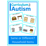 Household Items Same or Different Flash Cards for Visual Discrimination